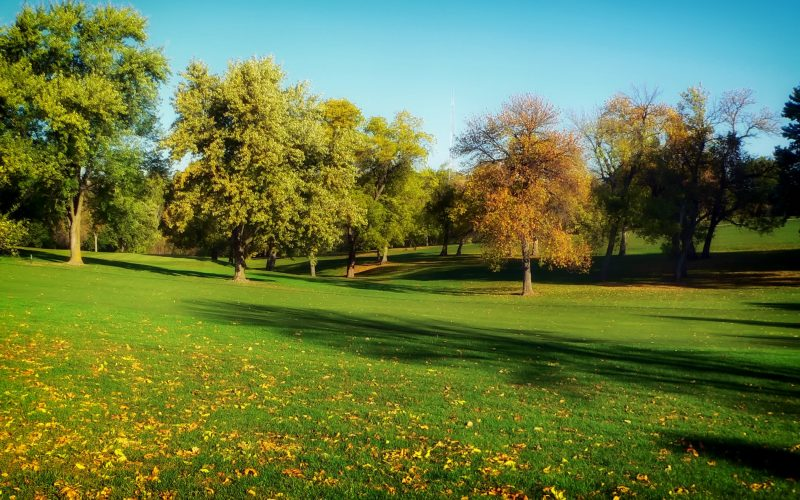 autumn-fall-golf-2336